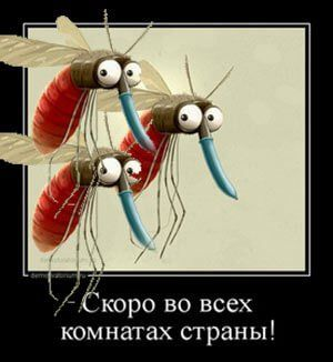различные натуральные средства от комаров