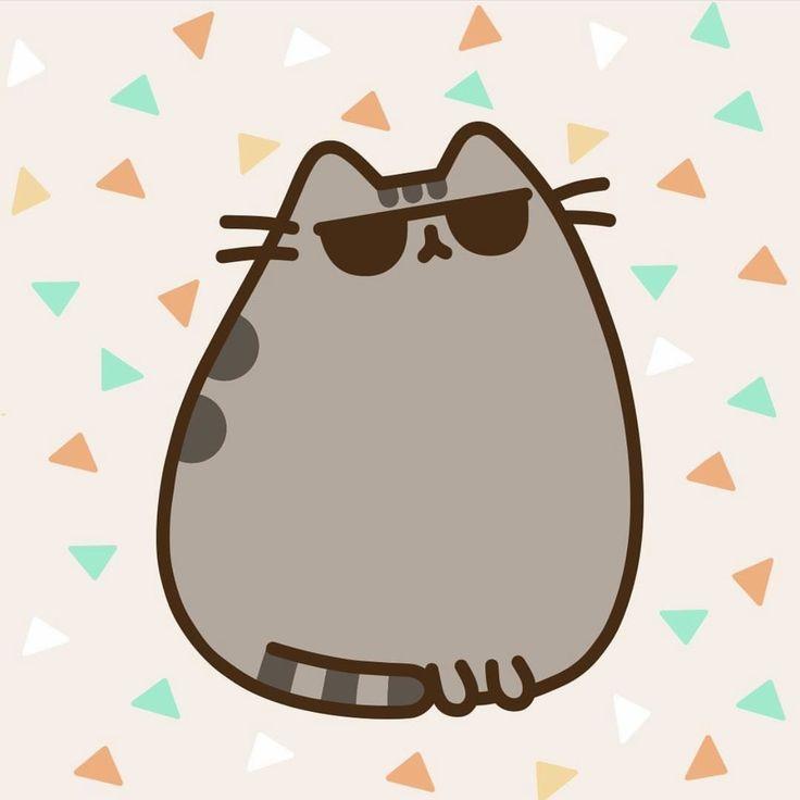 Картинки пухляша кота
