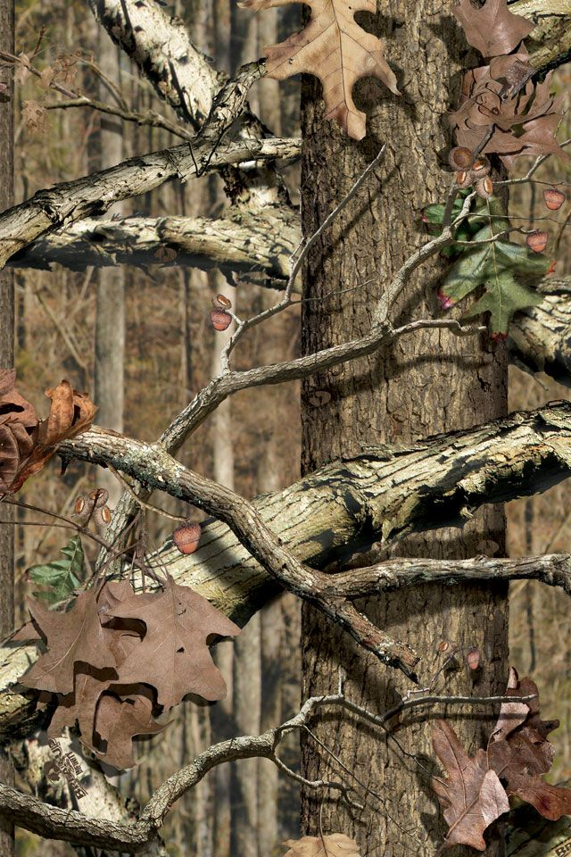 Realtree Wallpaper I Love Camo!! Pinterest Trees