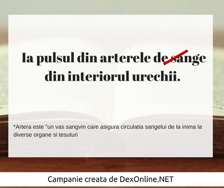 Salvam limba romana impreuna! #salveazalimbaromana #dex #gramatica http://dexonline.net/definitie-artera