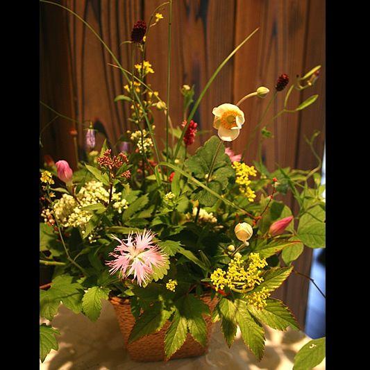 生け込み   サービス案内   京都の花屋「花政(はなまさ)」