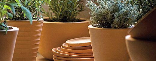 Découvrez et achetez en ligne les collections Poterie Ravel, manufacture de produits en terre cuite pour la décoration des jardins, terrasses et intérieurs depuis 1837 #poterieravel #poterie #terrecuite #pots