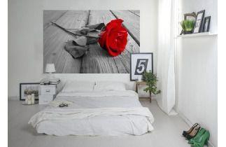 eplakaty.pl – produkty, aranżacje, opinie - Myhome