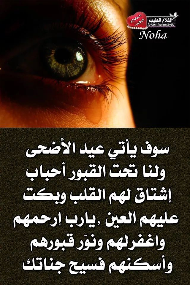 Pin By The Noble Quran On I Love Allah Quran Islam The Prophet Miracles Hadith Heaven Prophets Faith Prayer Dua حكم وعبر احاديث الله اسلام قرآن دعاء Movie Quotes Funny Funny Quotes