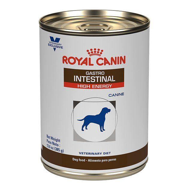 Royal Canin Veterinary Diet Gastrointestinal Canned Dog Food 13 5 Oz Case Of 24 Chewy Com Dog Food Recipes Canned Dog Food Best Dog Food