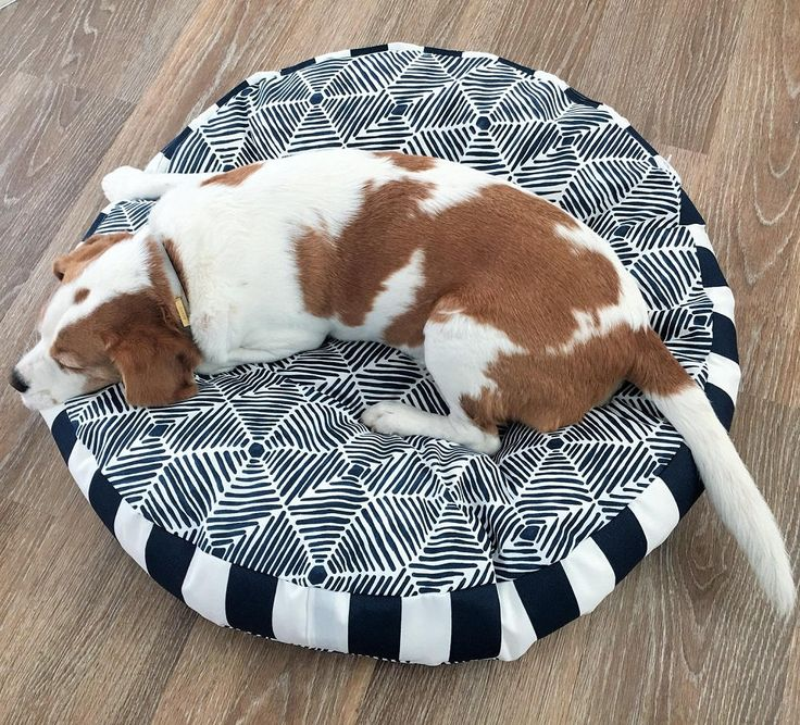 Navy and White design with navy and white stripe sides. Small 67cm diameter  NOTE: actual colour may vary to computer image  SIze Guide: Medium - 78cm diameter with 10cm sides - ideal for medium dog breeds - ie. beagle, schnauzer, spaniel, small boxer  IF YOUR SIZE IS NOT AVAILABLE  OR YOU WOULD LI