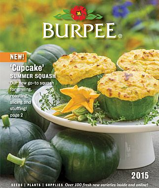 Elegant Requested Your 2015 Burpee Gardening Seed Catalog Yet?