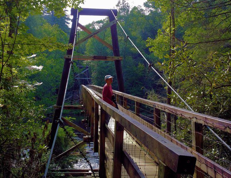 Can Hiking trails georgia swinging bridge were