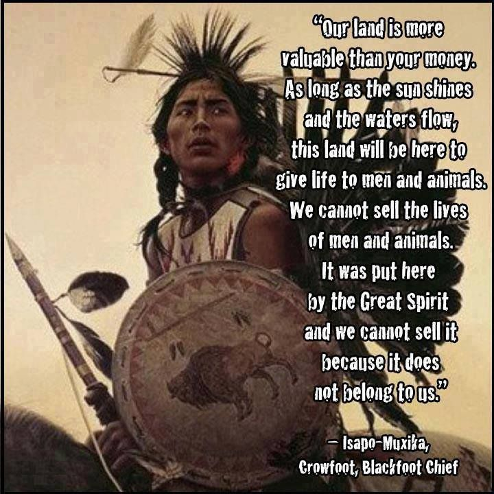 Native American Saying                                                                                                                                                                                 More