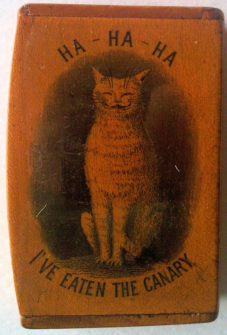 Amusing Scottish Antique snuff box featuring the idiom about the cat and the canary. Transfer printed, probably by Smith of Mauchline. Circa 1860.