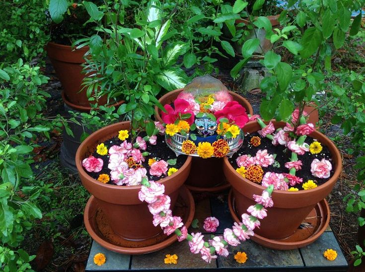Tulasi Shaligrama Vivah. Awesome page of dedicated deity worship