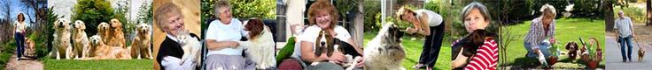 Animal Angels - How our pet sitting service works