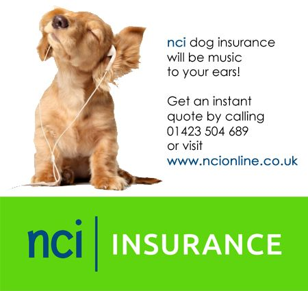 NCI Dog Insurance. Competitive dog insurance quote at http://www.ncionline.co.uk/pet-insurance/dog-insurance/