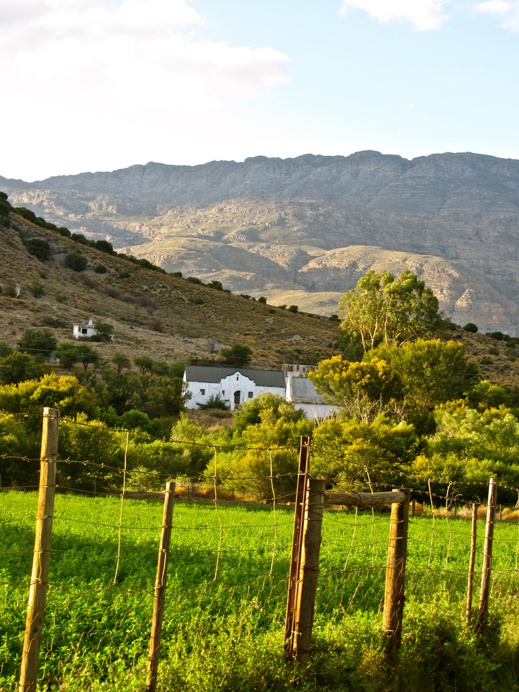 Lost in wine country outside of Oudsthoorn, South Africa.