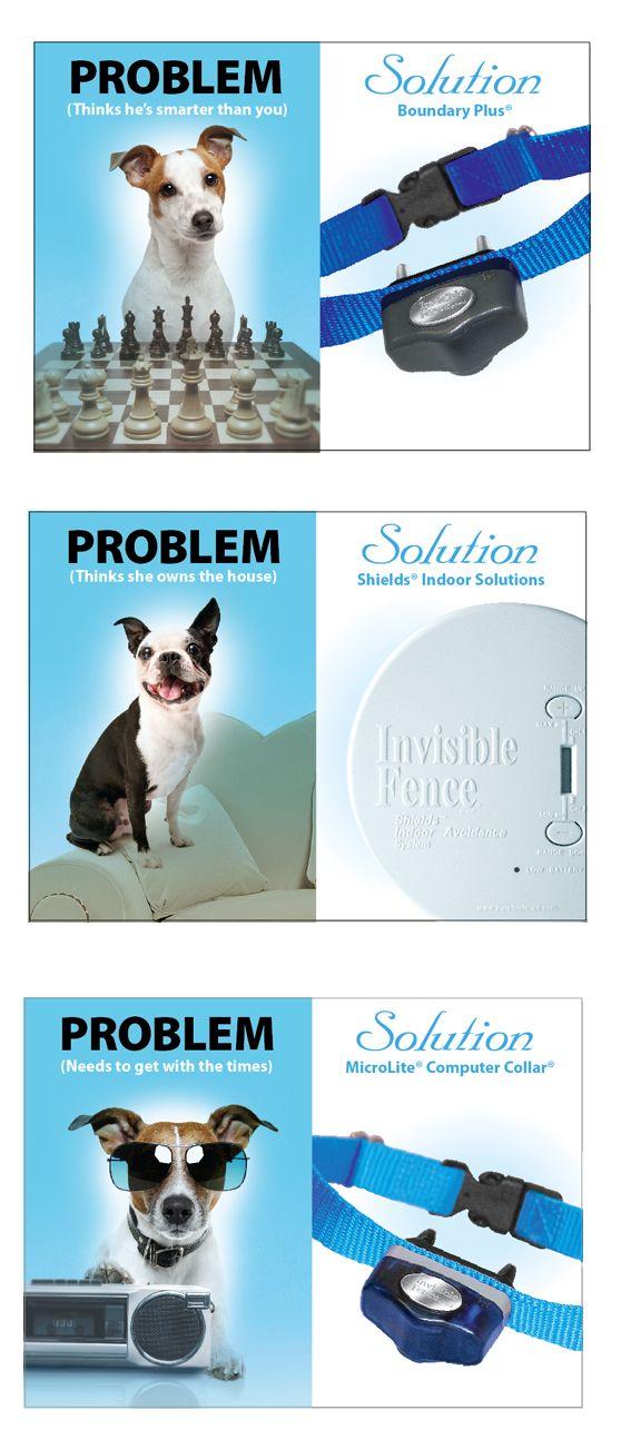 51 best Proven Pet Solutions images on Pinterest | Dog cat, Fences ...