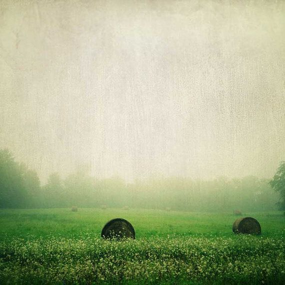 Stillness / green gray / rustic rural farm print / fine art photography / summer landscape / fog / autumn hay bales / farmhouse decor