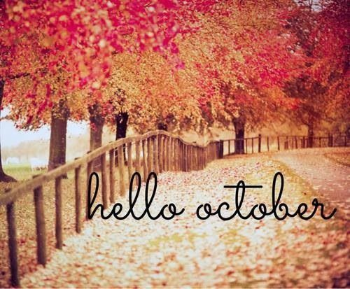 My Favorite Month Is Finally Here Hello October