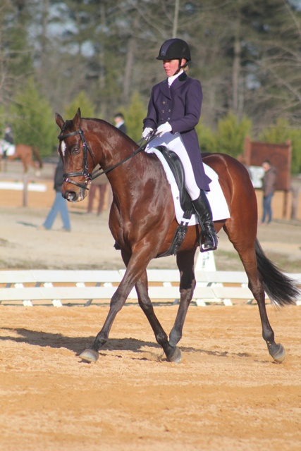 Emily Beshear and her Ky bred OTTB Here's To You