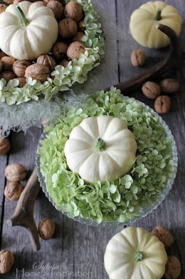 Fall Autumn Decorating. White Pumpkins and Nuts with a touch of Green. Home & Inspiration