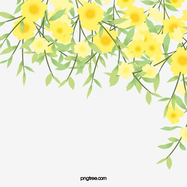 Yellow Hand Painted Fresh Spring Jasmine Hand Painted Soft Pale Spring Png Transparent Clipart Image And Psd File For Free Download Flower Png Images Yellow Spring Flowers White Flower Background