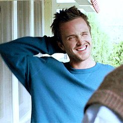 23 Signs You're Jesse Pinkman, Bitch