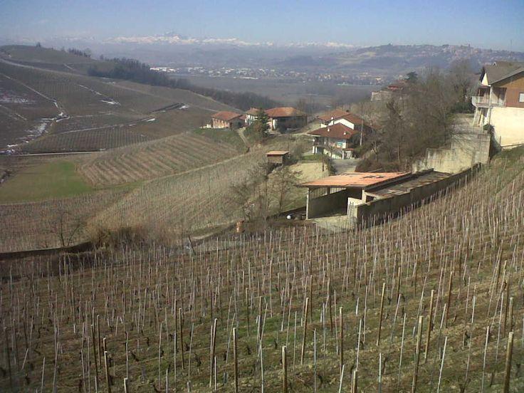 before building a house - Piedmont