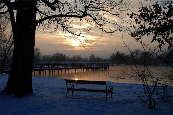 chiemsee winterday