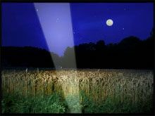 """Es bleibt im November bei der Konfrontation pur mit dem, was Bundesbürger tagtäglich an Schikanen erleben und welches Bild uns unsere Politiker dazu verkaufen. Den Start macht ein Boeser Brandbrief +++ INDECT +++ GEZ ab 2013 +++    Höchste Zeit, dass LED LENSER® neue Lampen auf dem Markt vorstellt, damit endlich allen das Licht aufgeht. In diesem Sinne laden wir ein zum Gewinnspiel – mit Nachttörn auf der Elbe mit der Neu Darchauer Fähre """"Tanja"""" und LED LENSER® P3 AFS P,  M7R X und M14 X."""