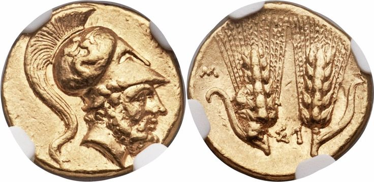 LUCANIA. Metapontum. Time of Pyrrhus (ca. 290-279 BC). AV tetrobol or third-stater (13mm, 2.84 gm, 5h). Attic standard. ΛEYKIΠΠOΣ, bearded head of Leucippus right, wearing crested Corinthian helmet, pushed back on head, decorated with Scylla hurling stone / Two barley ears of six grains, each with leaf; M-E across outer fields, ΣI between.