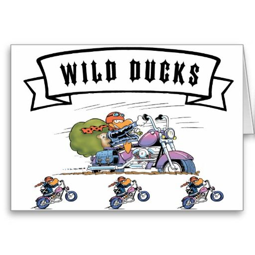 A Christmas card for the motorbike riders out there. $4.35 from the Swamp Cartoons Zazzle Store. http://www.zazzle.com.au/swamp_wild_ducks_christmas_card-137519852024862365