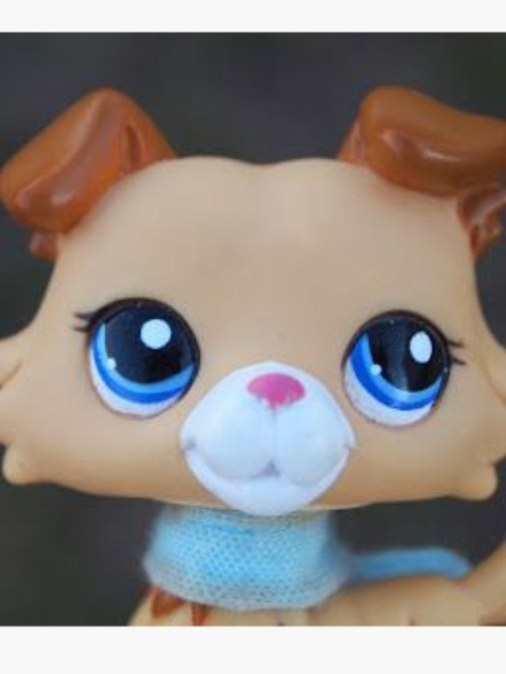 Lps collie. I love her eyes. I have really been wanting to get a lps collie!