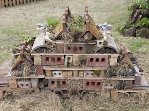 :Creepy Town - Beneficial Insect Shelter: