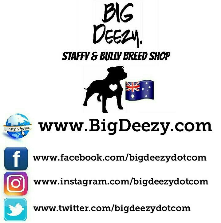 Big Deezy's Staffy and Bully Breed Shop Australia. www.BigDeezy.com // @bigdeezydotcom  #bigdeezydotcom #staffies #pitbulls #bullybreeds #staffy #staffordshirebullterrier #custom #clothes #printing #pets #Dogs #adoptdontshop #dontbullymybreed #shop