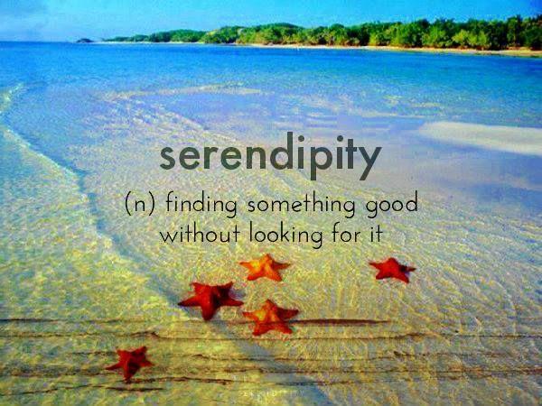 308fe590bc78b6153e941425e8226c56--serendipity-definition-most-favorite.jpg