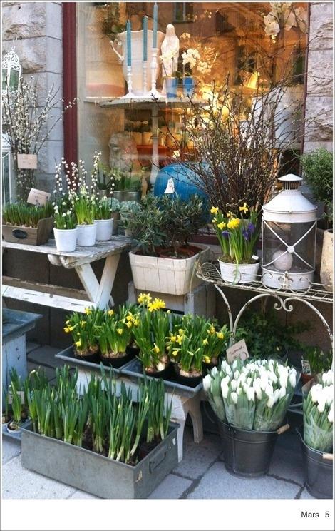 Swedish flower shop spring