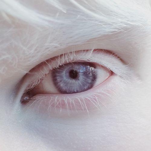 Resultado de imagem para olhos violetas reais