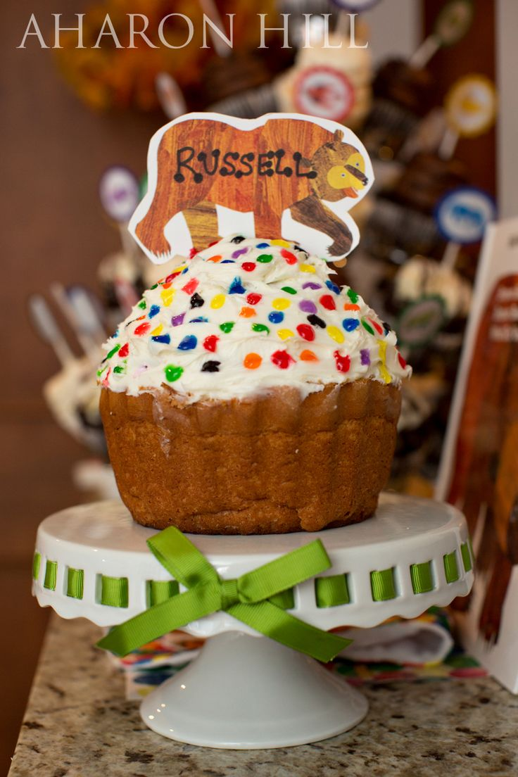 Russell's Brown Bear First Birthday Party | Atlanta Child Photographer » Aharon Hill Photography