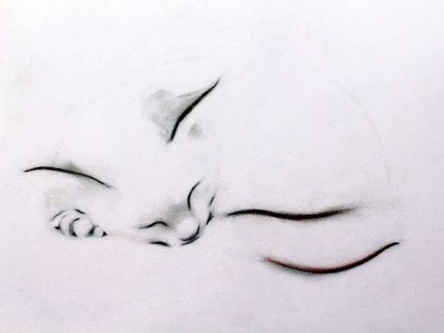 Tatuajes de gatos: Fotos de algunos diseños - Tatuajes de gatos: Sutil