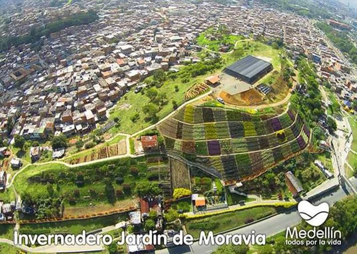 The gardens of Moravia: What earlier was a mountain of trash has now thanks to urban development been transformed into a garden mountain. Improving moral and the cityscape! #development #Innovation #medellin #Transformation #City #colombia #travelandmakeadifference