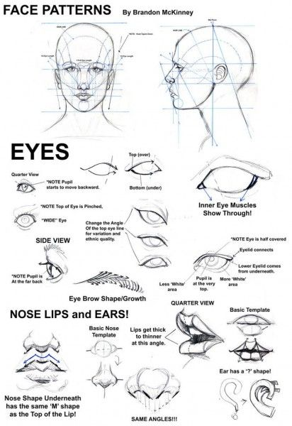 Como dibujar ojos, narices y orejas