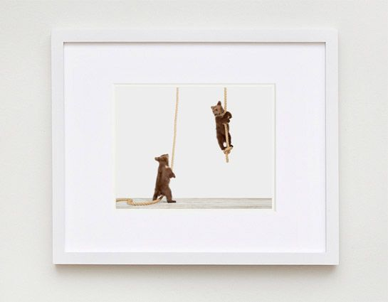 Climbing Cubs - The Animal Print Shop by Sharon Montrose