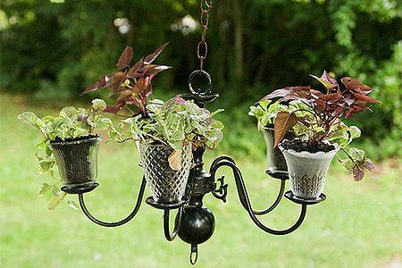 O uso do lustre para vasinhos de plantas...um charme!