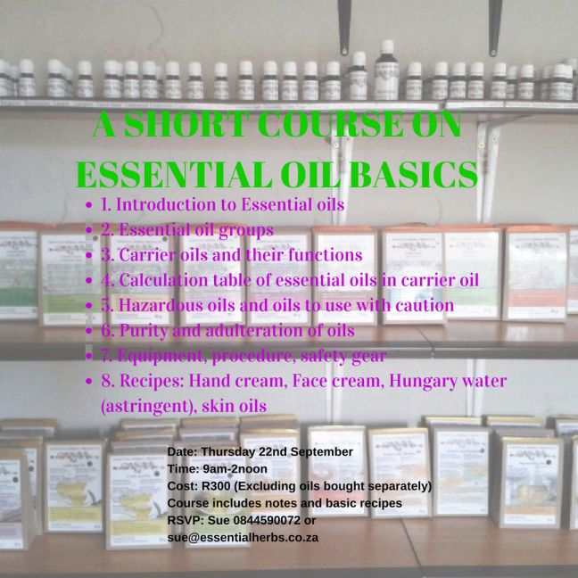 a-short-course-on-essential-oil-basics