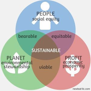 """Conscious capitalism= """"Money is one measure of value, but not the only measure"""" (Denning, 1)."""