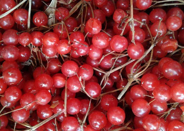 #kırmızı #red