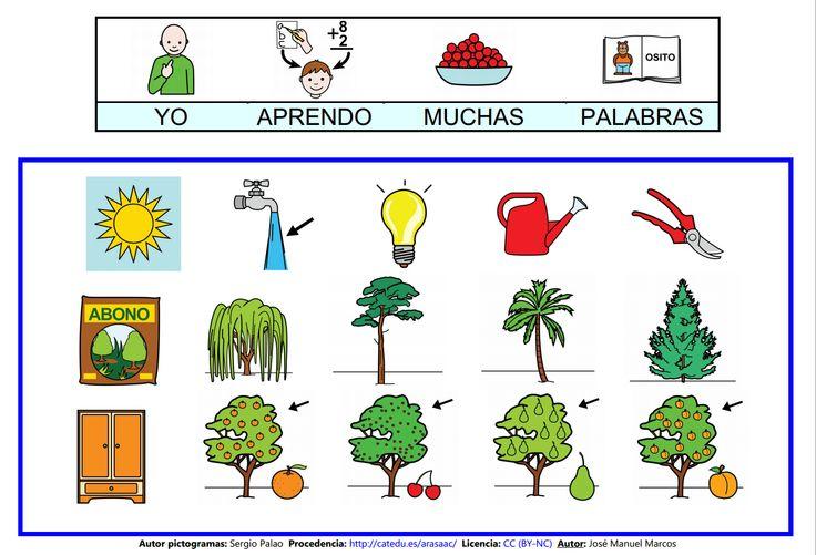Mapa semántico sobre el Árbol (lámina 12), A través de esta actividad, podremos trabajar la comprensión y la expresión oral, así como la adquisición de vocabulario. http://informaticaparaeducacionespecial.blogspot.com.es/2009/03/actividades-generadas-partir-del-mapa_20.html