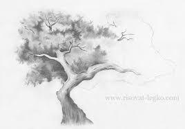 Картинки по запросу рисунок дерева без листьев карандашом ...