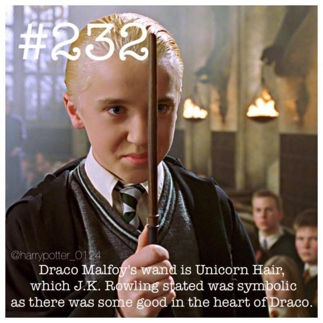 25 Harry Potter Fakten Beschleunigen Ihre Hp Begeisterung Beschleunigen Sie Craze Facts Harry Hp Bege Harry Potter Facts Potter Facts Harry Potter Love