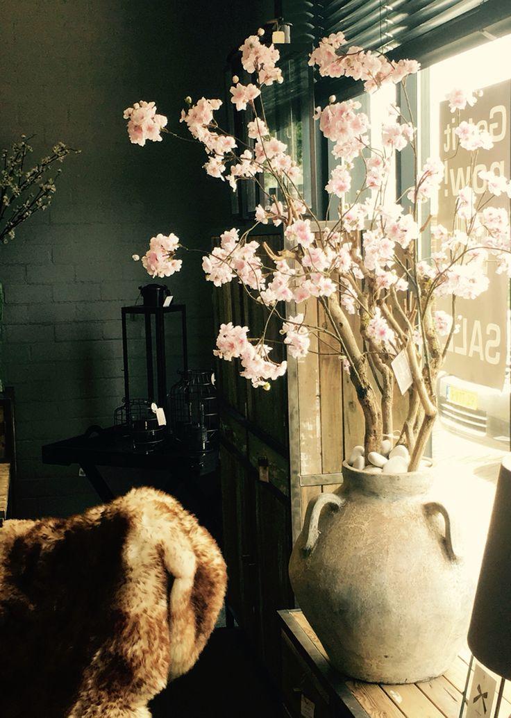 Prachtige bloesemboom in kruikvaas! Annefleurs zijden bloemen kunt u ook kopen bij Bellisimo wonen en genieten in Naaldwijk!