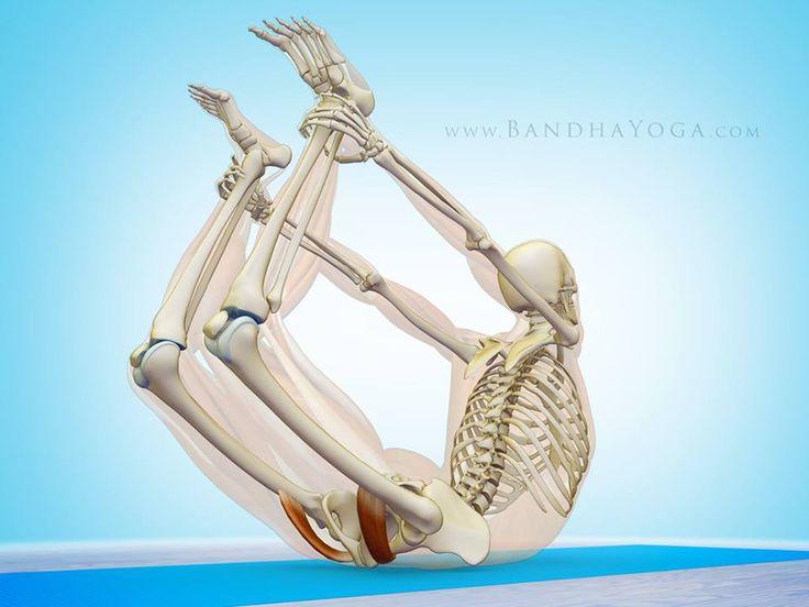 Pectineus muscle stret...